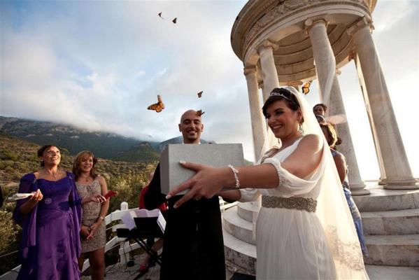 mariposas bodas
