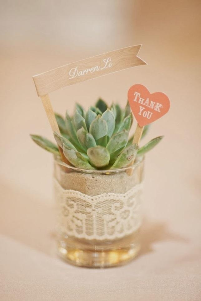 regalos ecológicos bodas