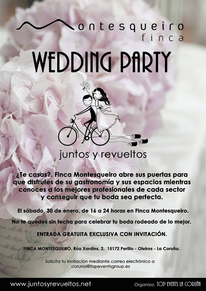 wedding party finca montesqueiro